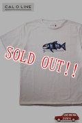 「CAL O LINE」TRIDENT FISH T-SHIRTS キャルオーライン トライデント フィッシュ 半袖Tシャツ  CL191-084 [ホワイト]
