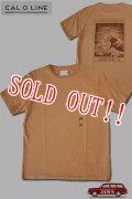 「CAL O LINE」AMERICA WAVE T-SHIRTS キャルオーライン アメリカウェーブ 半袖Tシャツ  CL201-081 [ラセット]